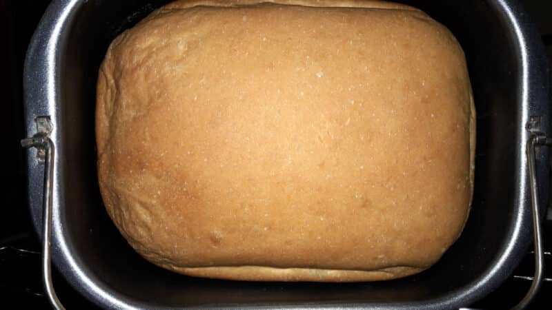 Best Oster Bread Makers to Bake Perfect Homemade Bread
