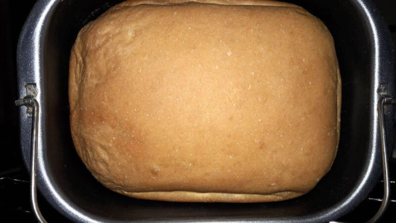 Oster Bread Machines for Baking Perfect Homemade Bread
